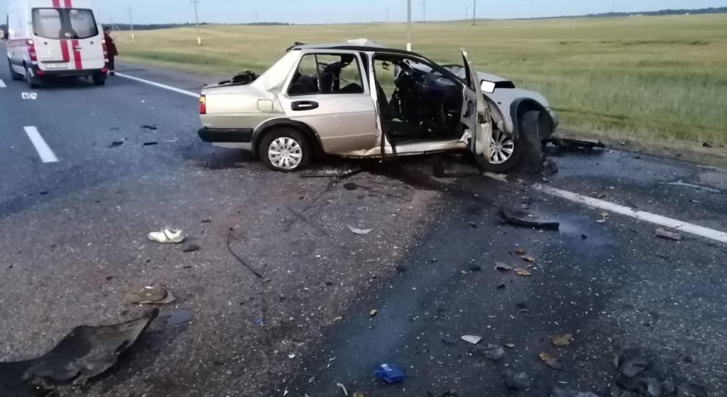 Микроавтобус лоб в лоб столкнулся с легковушкой в Оршанском районе, погибли два человека