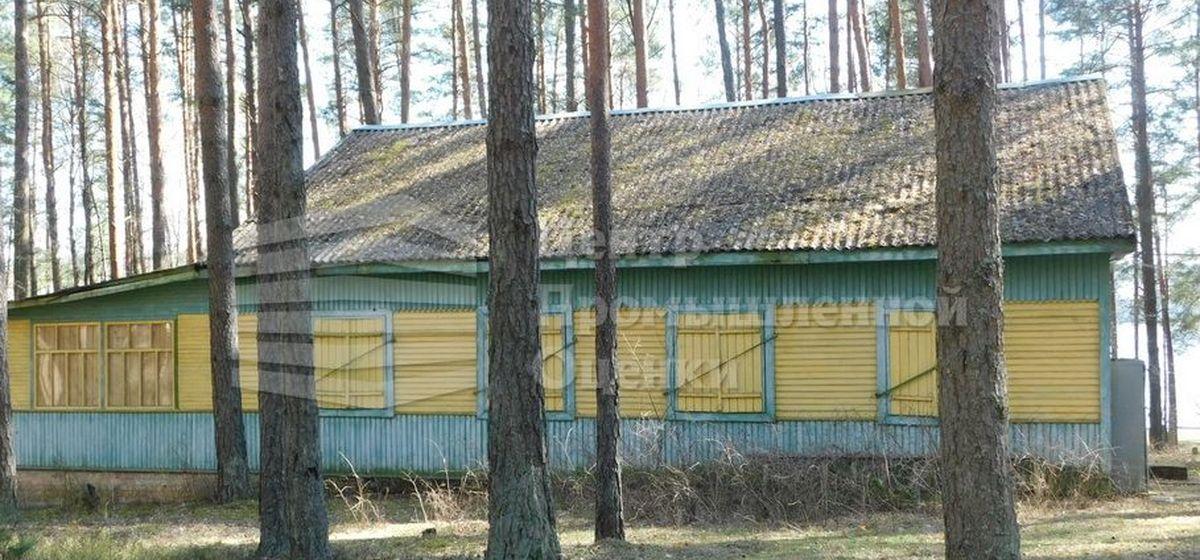 Домики на озере Гать выставили на торги в Барановичском районе