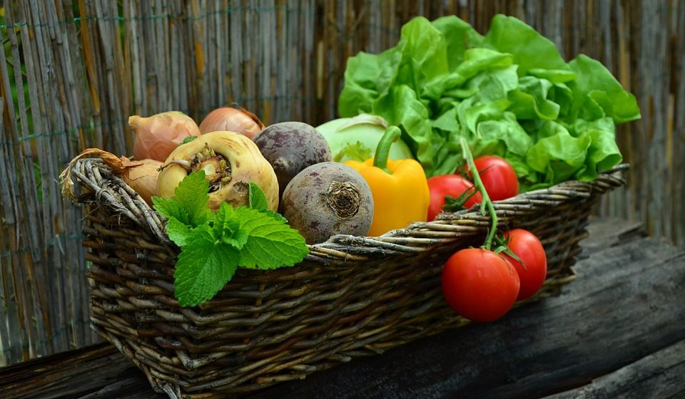 Сколько можно заработать на чернике, лисичках и других ягодах и овощах в Барановичах