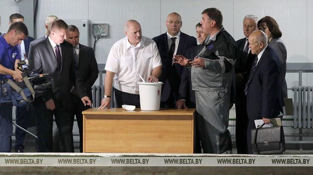 «Если есть, надо делать быстрее»: Лукашенко приказал увеличить вдвое производство рыбы