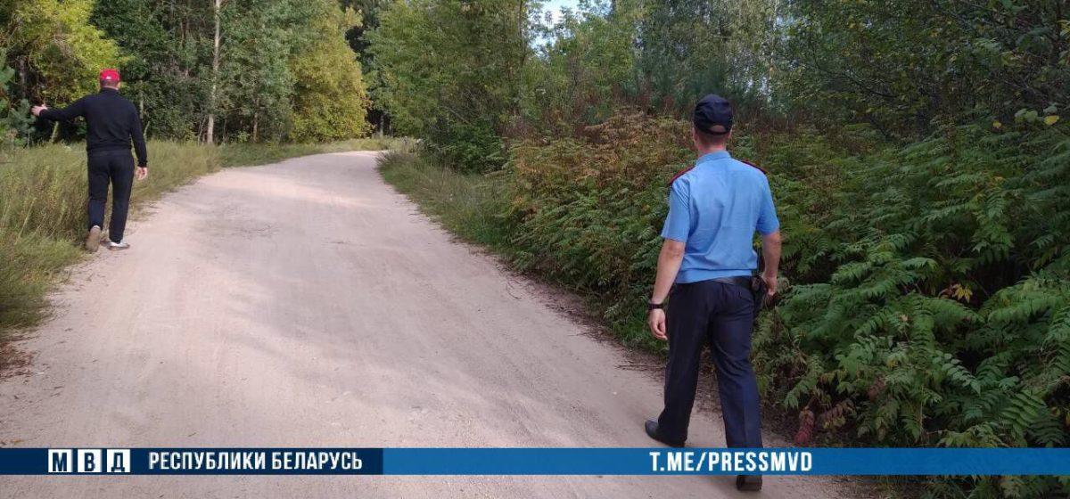 Пятилетняя девочка потерялась в Могилевской области. Малышка могла уйти в лес