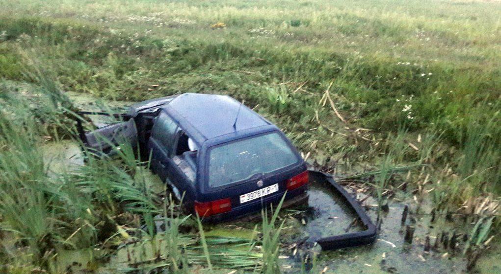 Машина сбила лося на М1 и вылетела в придорожный канал. Животное погибло, водитель в больнице