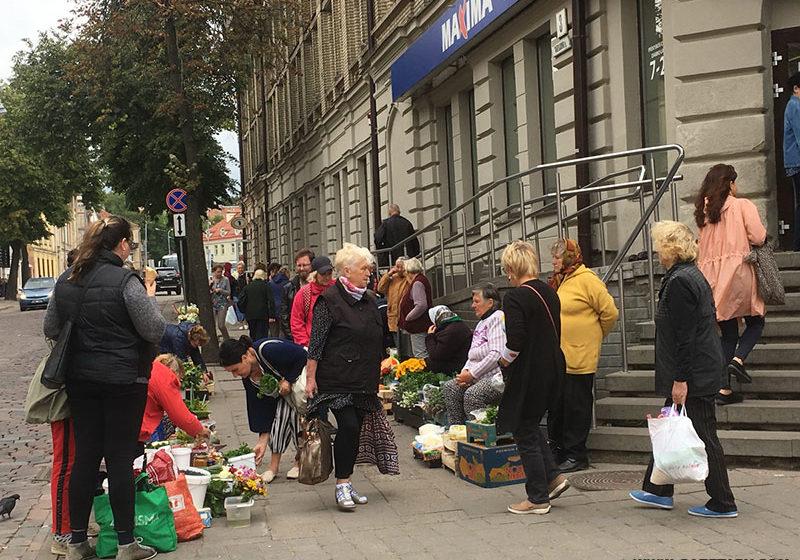 «У нас нищих нет». Сколько зарабатывают литовские пенсионеры, которые продают овощи и ягоды