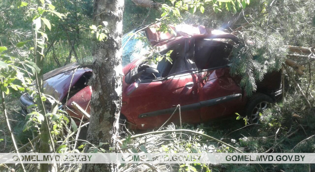 Легковушка вылетела в кювет и врезалась в дерево в Калинковичском районе — водитель погиб