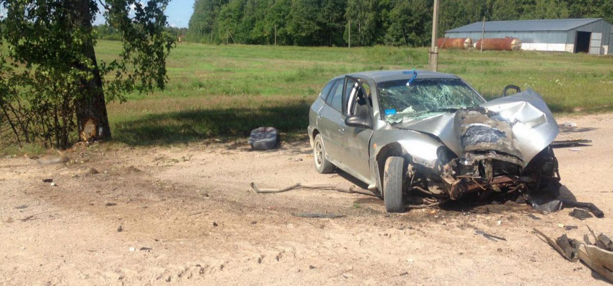 Пьяный водитель и пассажирка погибли, когда машина врезалась в дерево в Пуховичском районе