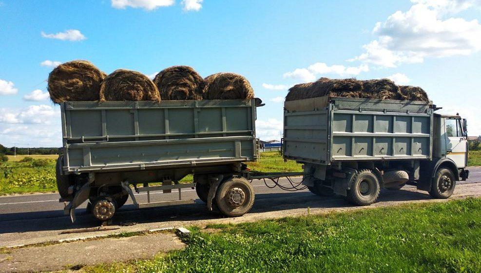 В Ляховичском районе у МАЗа во время движения отлетело колесо. Из-за этого «Киа» со встречки съехала в кювет