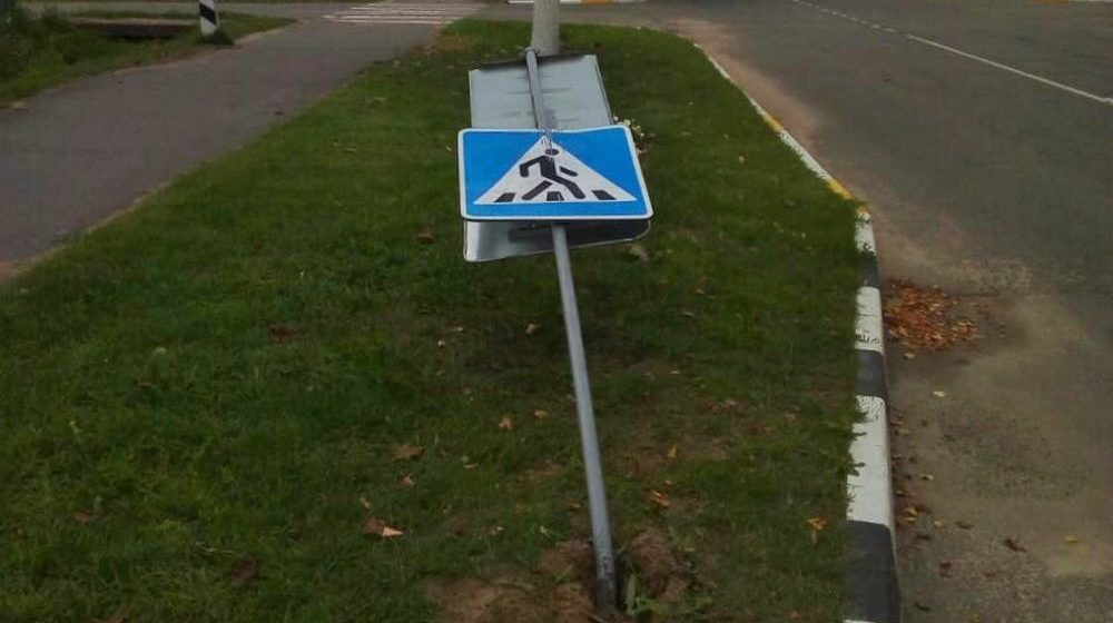 Пять дорожных знаков сломали пьяные подростки на Гомельщине. В отношении них возбудили уголовное дело
