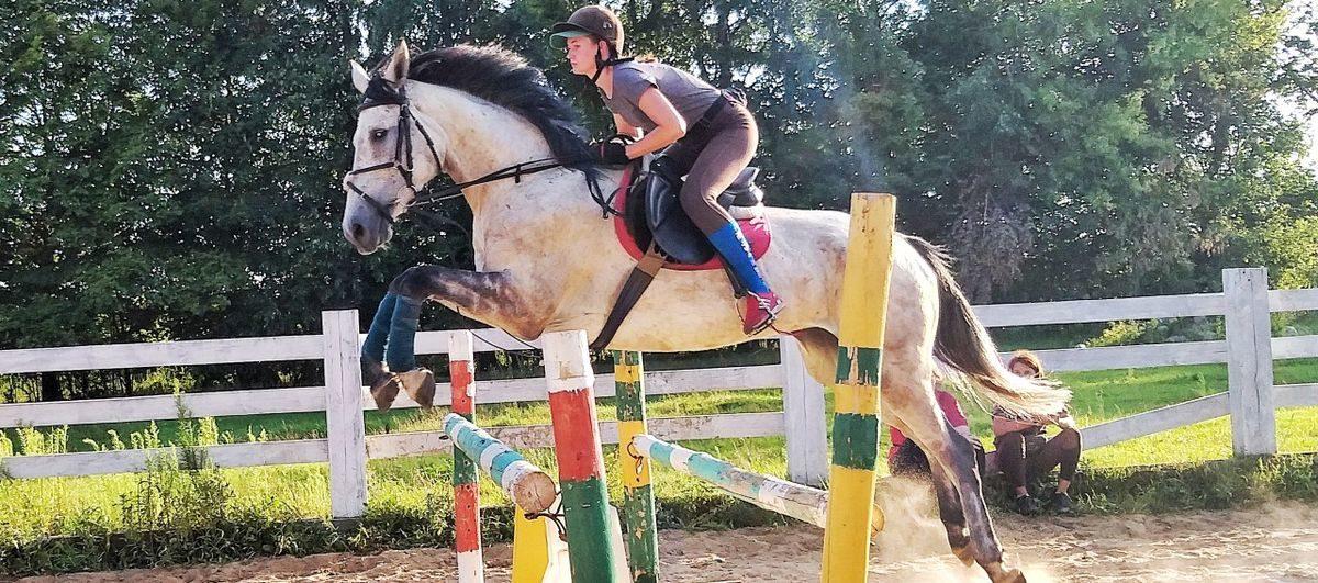Соревнования по конному спорту пройдут в Барановичском районе. Входной билет — мягкая игрушка