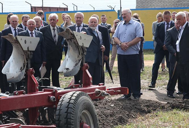 Лукашенко рассказал, что у него 47,2 гектара земли. Что он на ней выращивает