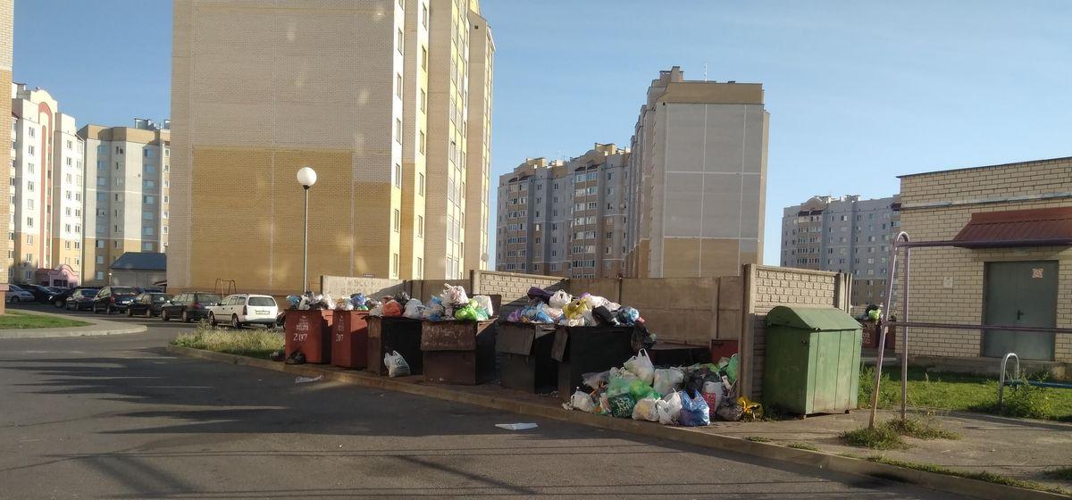 «Контейнеры переполнены уже несколько дней». Как часто должны вывозить мусор в Барановичах?