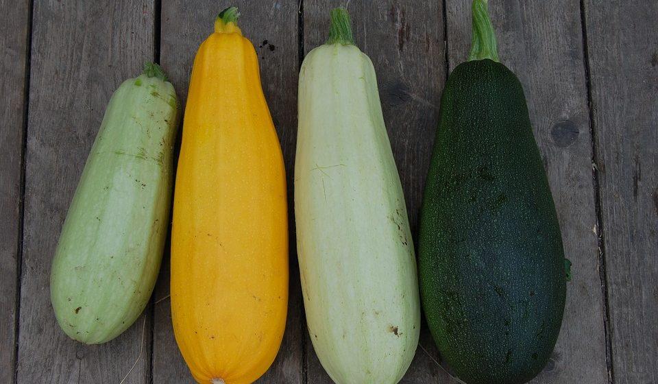 Чем полезны кабачки для мужского и женского организмов