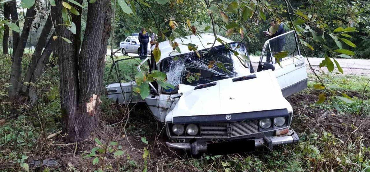 Под Витебском «Жигули» врезались в дерево: водитель погиб, пассажиры пострадали