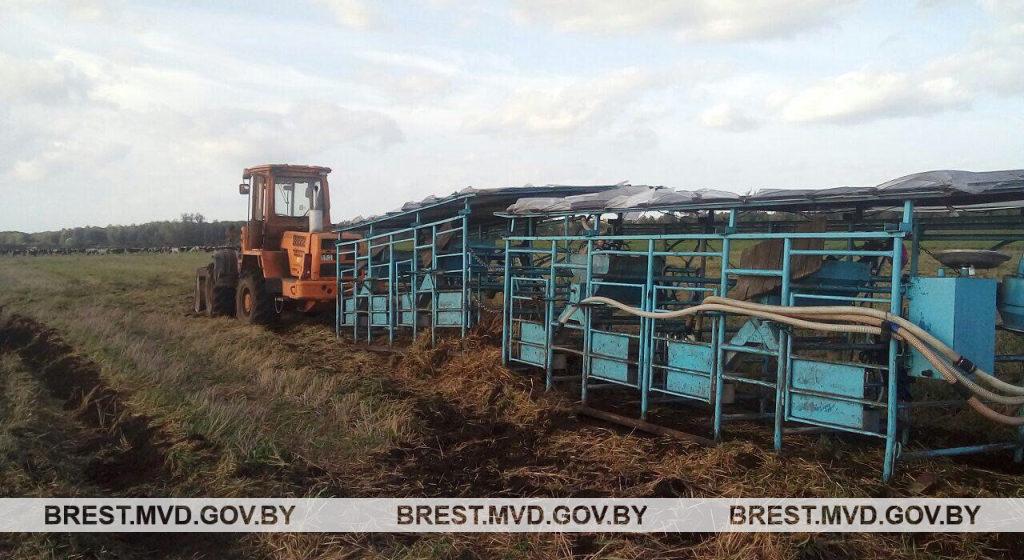 Под Ивацевичами трактор задавил животновода