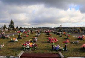 «Кладбище – не место для украшений». Чем опасны искусственные цветы, рассказал эколог