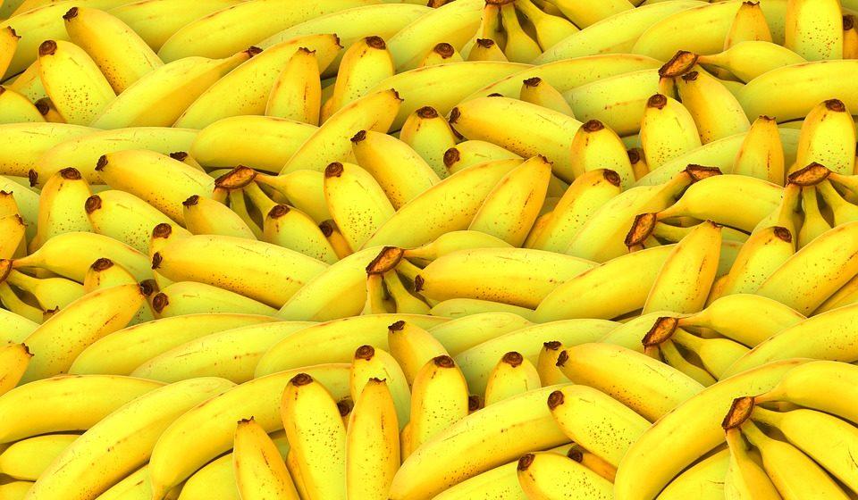 Грибок уничтожает плантации бананов. Люди могут остаться без любимых фруктов