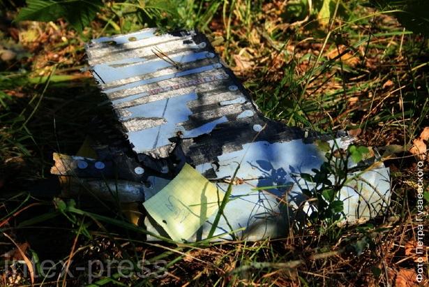 Обломки «МиГ-29» были разбросаны на большом расстоянии от места крушения самолета. Фото: Intex-press
