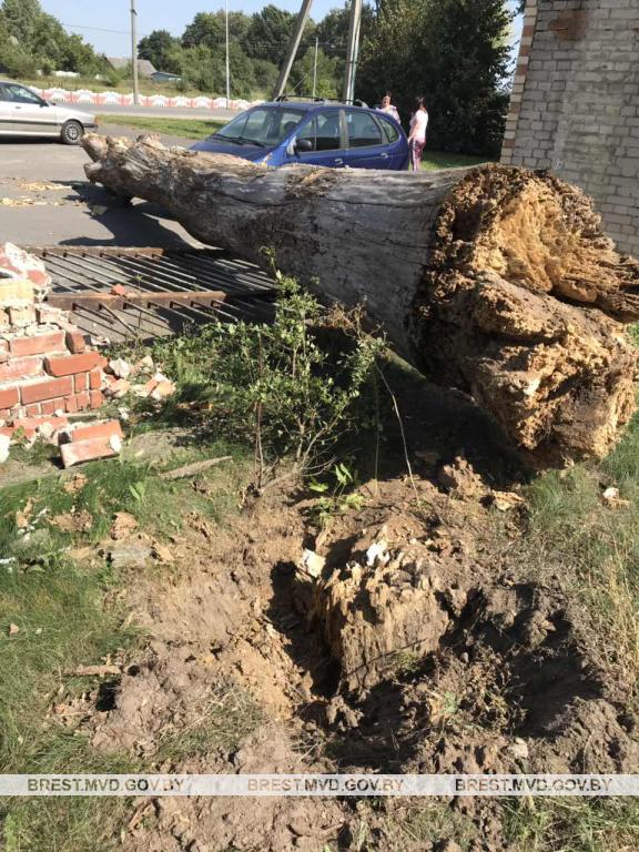 Место инцидента. Фото: brest.mvd.gov.by