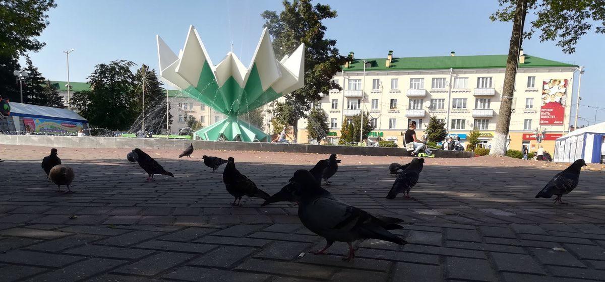 Какая погода будет в Барановичах в четверг, 12 сентября