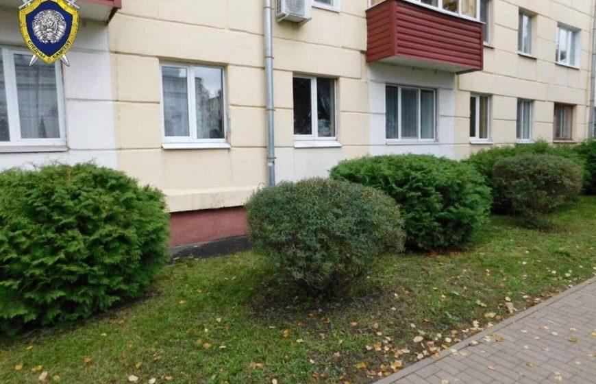 Двухлетний ребенок выпал с пятого этажа в Бобруйске и практически не пострадал