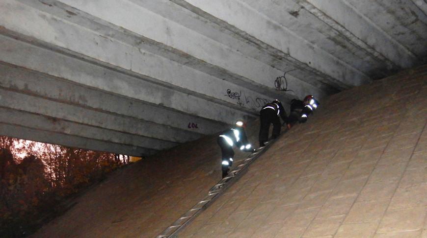 В Могилеве мальчик забрался на опору моста. Снимать его пришлось спасателям