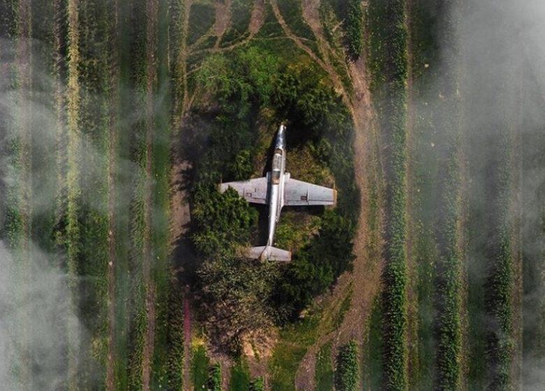 Спрятанный самолет нашли на белорусско-польской границе посреди поля