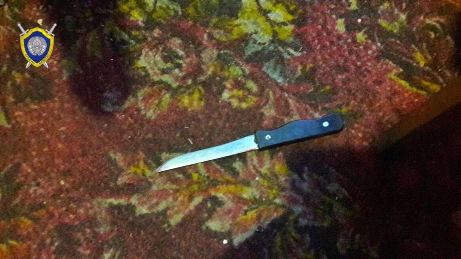 В Чаусах милиционеру пришлось выстрелить в мужчину, который угрожал ножом женщине