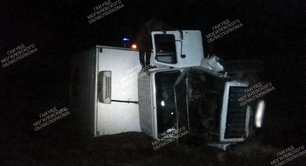 Под Быховом повозка выехала на встречку и столкнулась с грузовиком. Возчик погиб