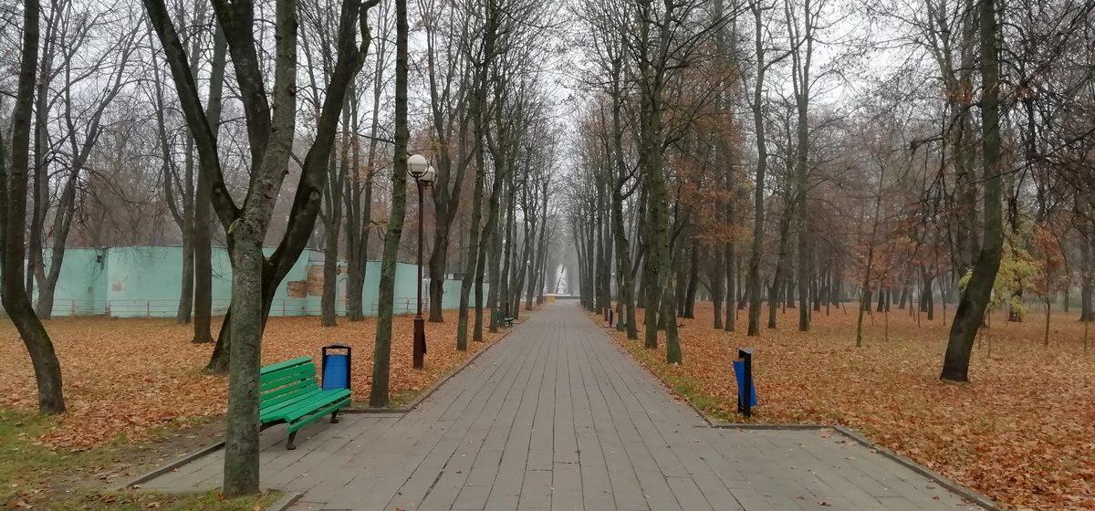 До зимы 12 дней. Какой будет погода в Барановичах 19 ноября?