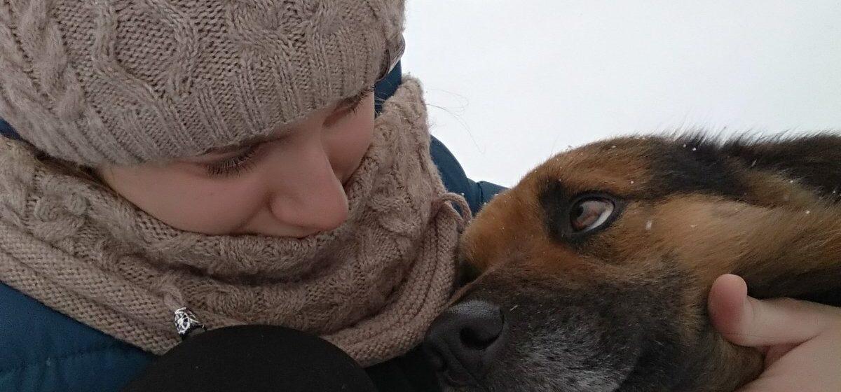 «Только шкура осталась». В Барановичском районе волки загрызли собаку