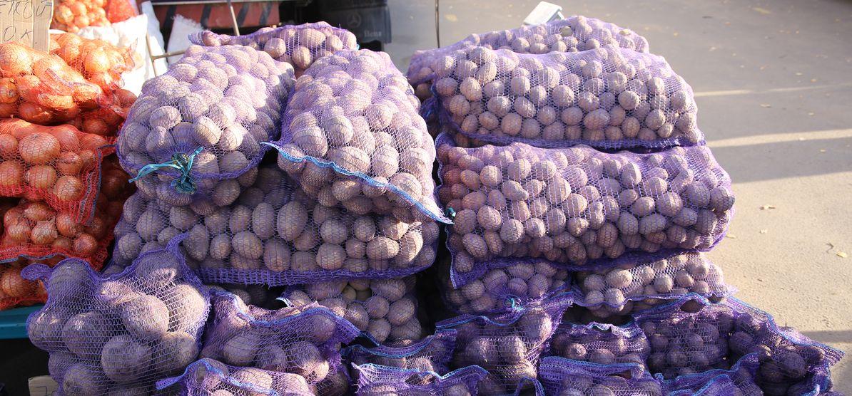 В Барановичском регионе завершили уборку картофеля