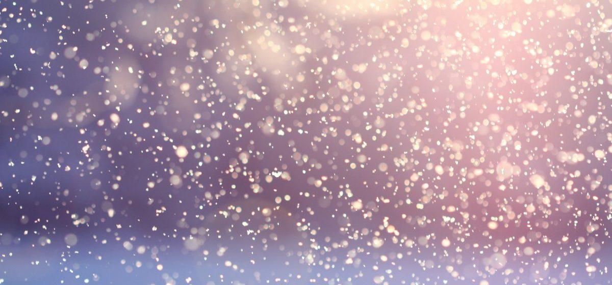 Первый снег выпал в Беларуси. Фотофакт