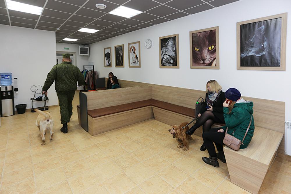 Клиенты на приеме в клинике. Фото: Александр ЧЕРНЫЙ