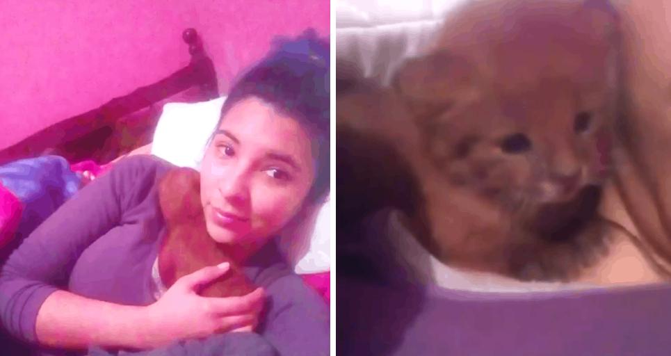Девушка приютила котенка, а оказалось, что это хищный зверь