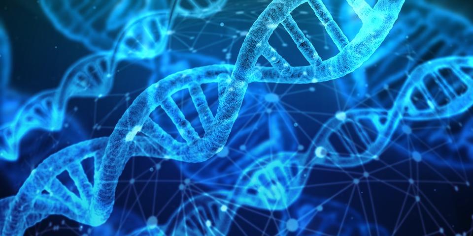 В Лунинце многодетный отец после теста ДНК узнал, что на самом деле он не многодетный