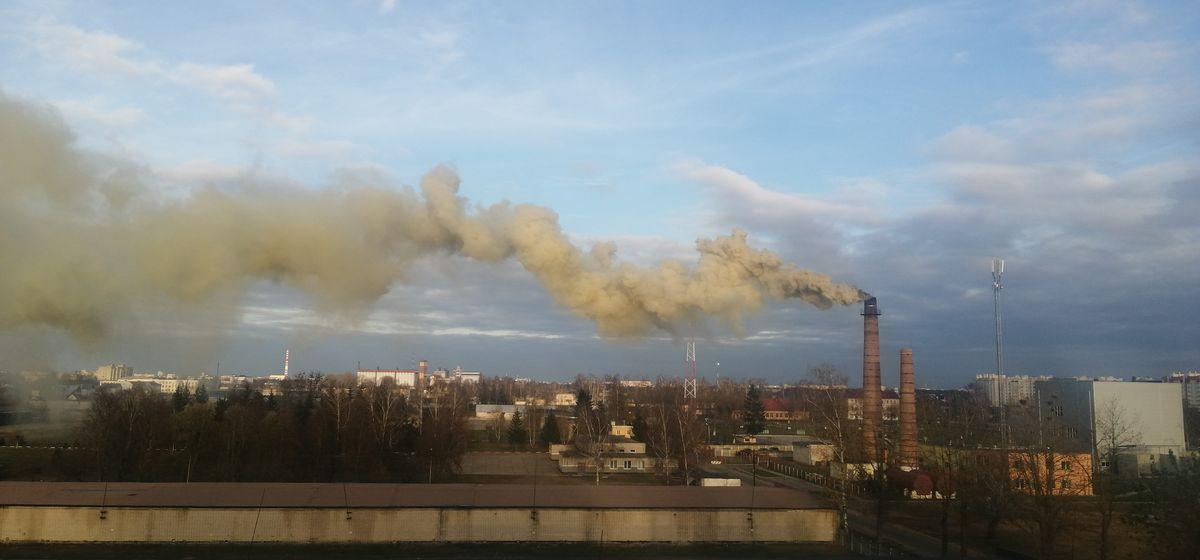 Новости. Главное за 4 ноября: в Германии перевернулась фура с двумя белорусскими дальнобойщиками, черный дым накрыл часть Барановичей и боровик с метровой шляпкой
