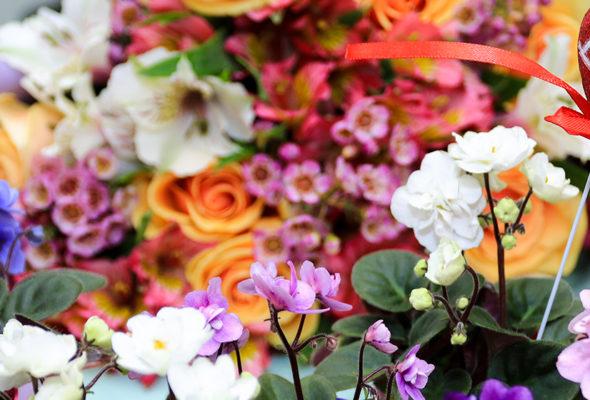 Цветы всегда доставляют радость