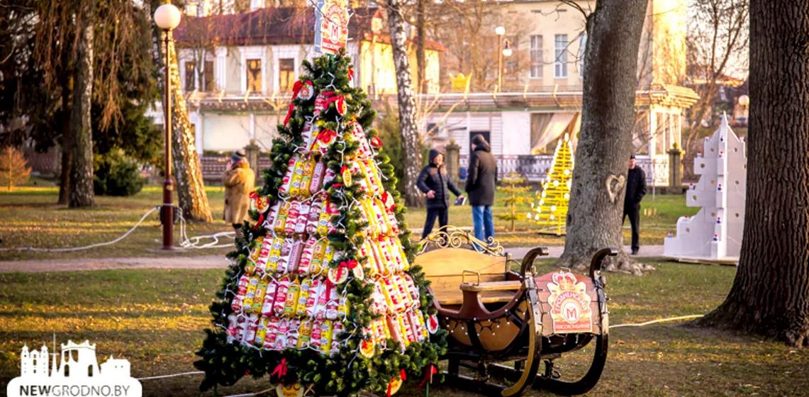 В Гродно город украсили елками из колбасы и «золотых слитков». Фото