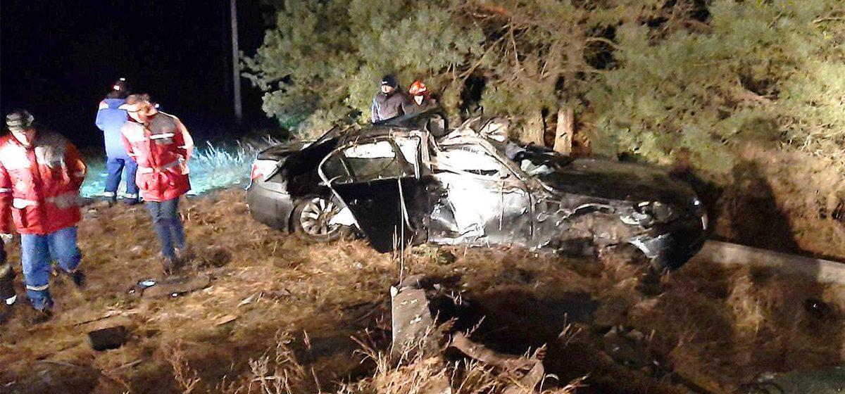 В Светлогорском районе автомобиль BMW вылетел в кювет и врезался в опору ЛЭП