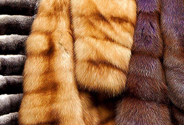 Купить шубы из норки на mexa-italy.com.ua – выгодное вложение