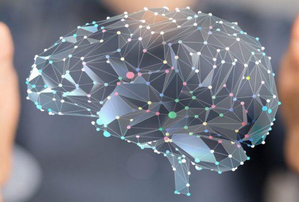 Мозг человека имеет неограниченные возможности