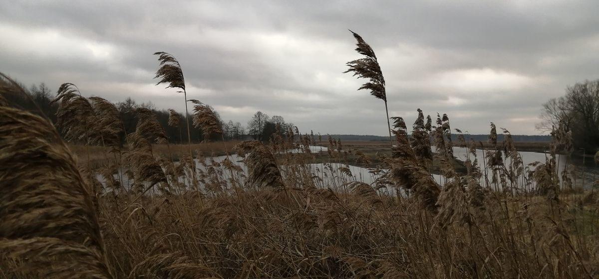 Все еще холодно или потеплеет? О погоде в Барановичах 2 апреля