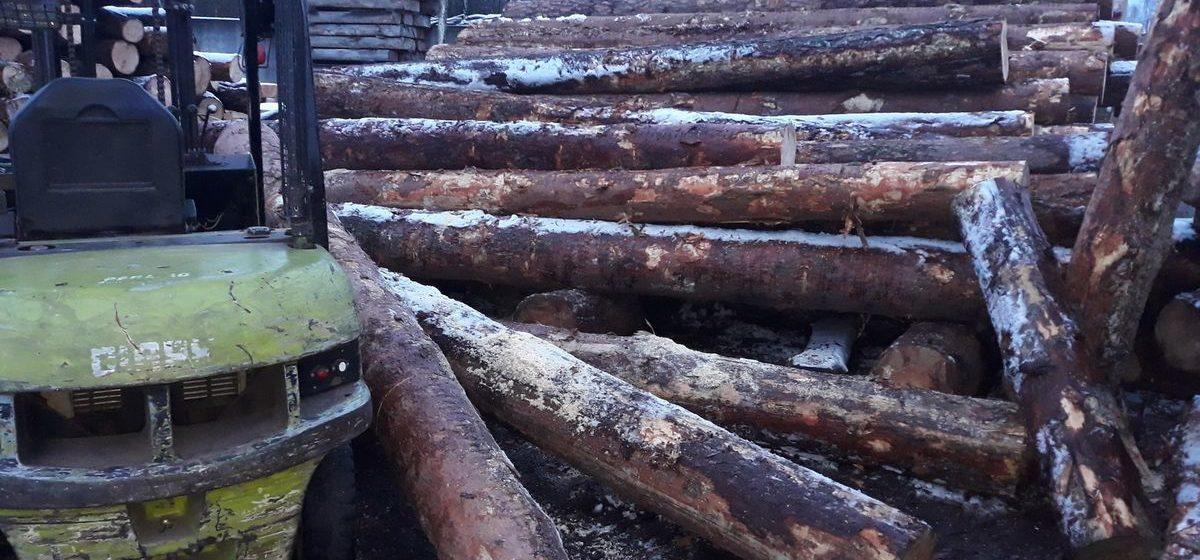 На деревеобрабатывающем предприятии в Жабинке рабочего завалило бревнами