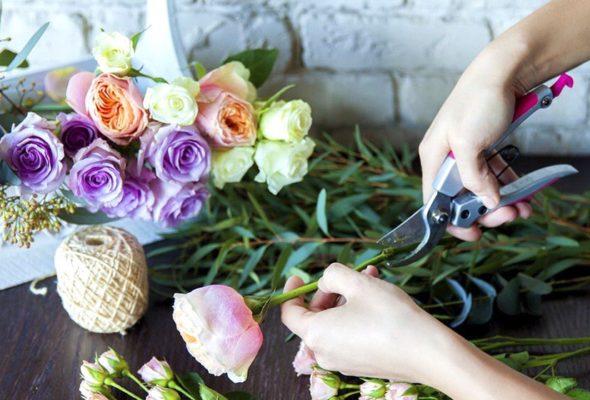 Цветы всегда приносят радость