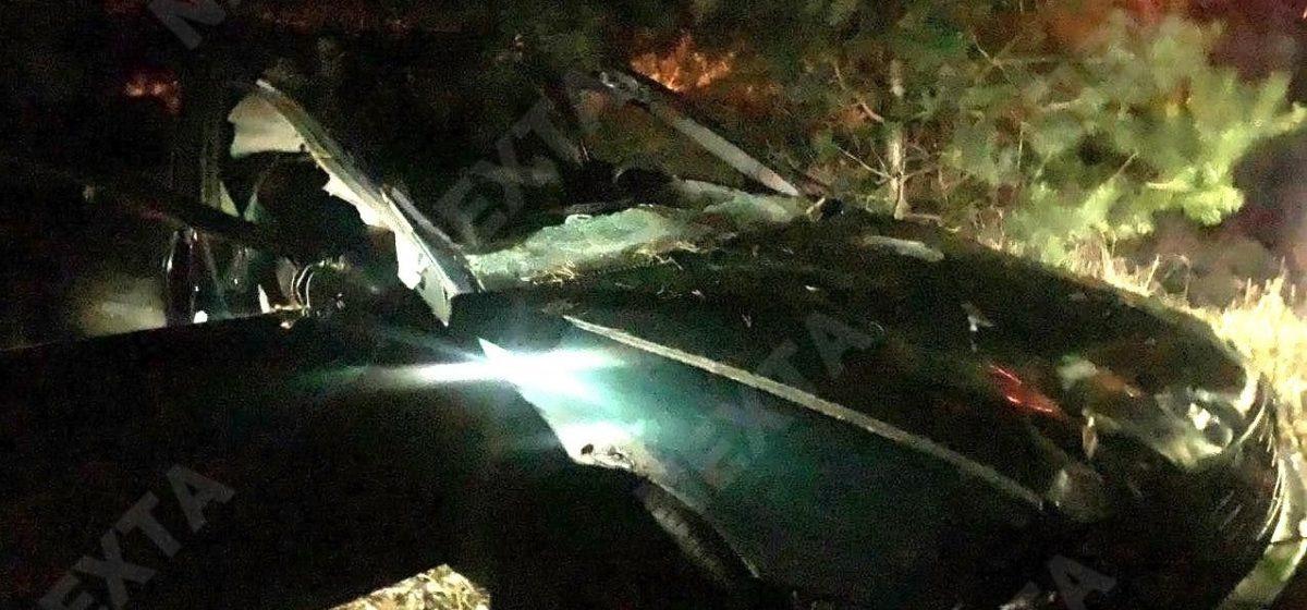 Под Барановичами автомобиль сбил лося на трассе. Фотофакт