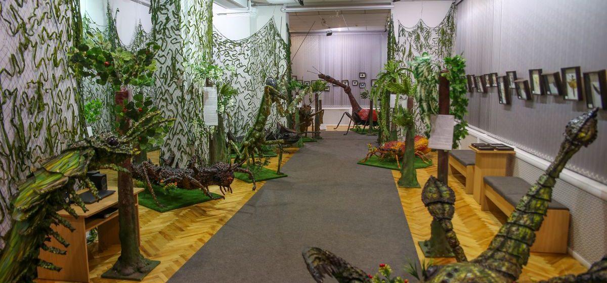 В Барановичах открылась выставка «Гигантские насекомые». Фоторепортаж