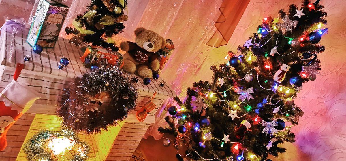 Как украсили свои елки на новогодние праздники жители Барановичей. Фотоподборка