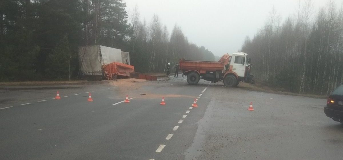 Под Мостами столкнулись фура и грузовик дорожной службы — серьезно пострадал один человек. Фото