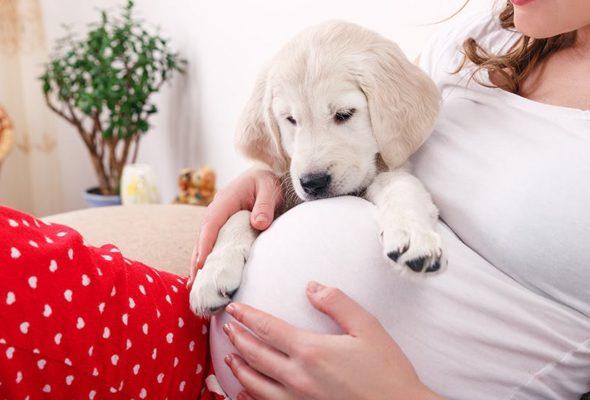 Сон ребенка полезен и родителям