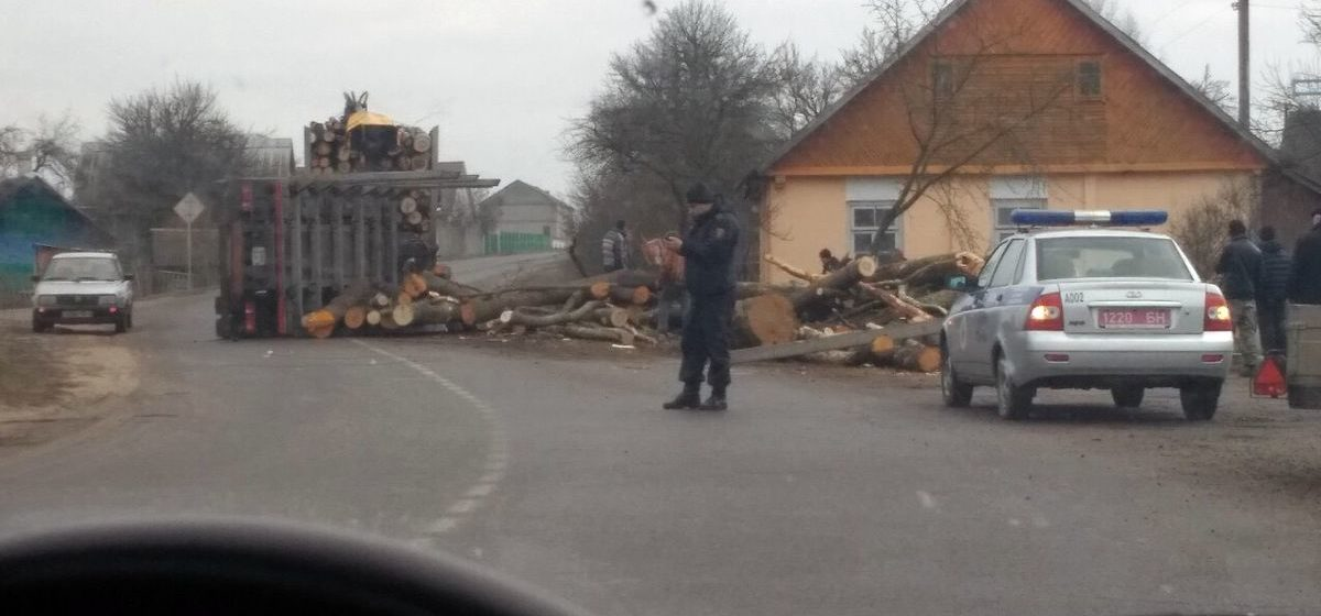 Оглашен приговор водителю лесовоза за ДТП в Ружанах, в котором погибли 6-месячная девочка и ее бабушка