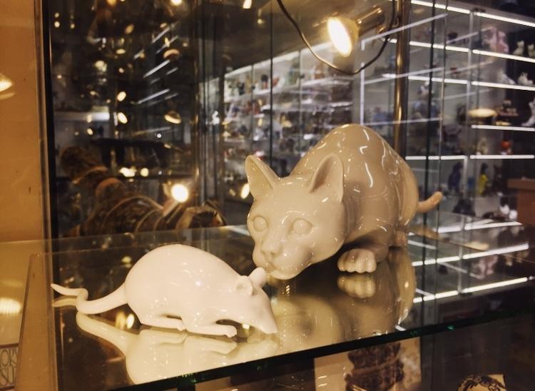 Кошка и мышка. Фото: Ирина КОМИК